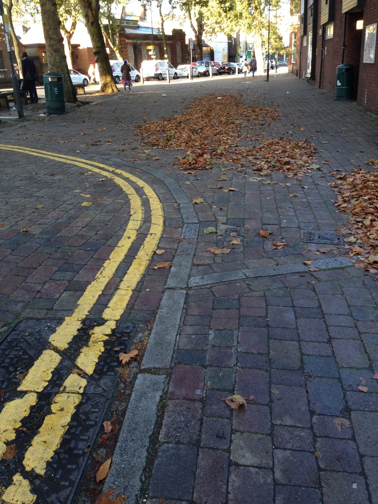 pavement with crispy autumn leaves